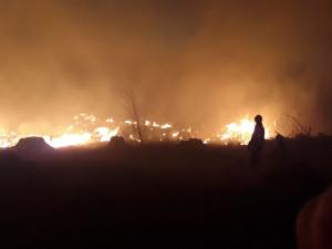 FOTO: Hasiči v kraji během čtyř hodin vyjížděli k devíti požárům lesa