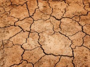 Pokles hladiny podzemních vod i řek bude výrazný. Sucho letos zasáhlo Česko dříve než loni, upozorňuje limnolog Rulík