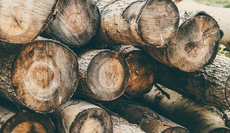 Neznámý pachatel ukradl nařezané dřevo za třicet tisíc