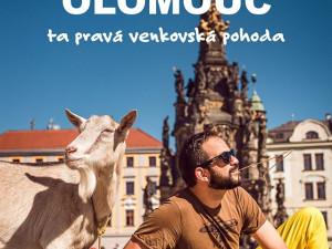 Ta pravá venkovská pohoda. Olomoucká radnice reaguje na reklamní kampaň žlutého dopravce