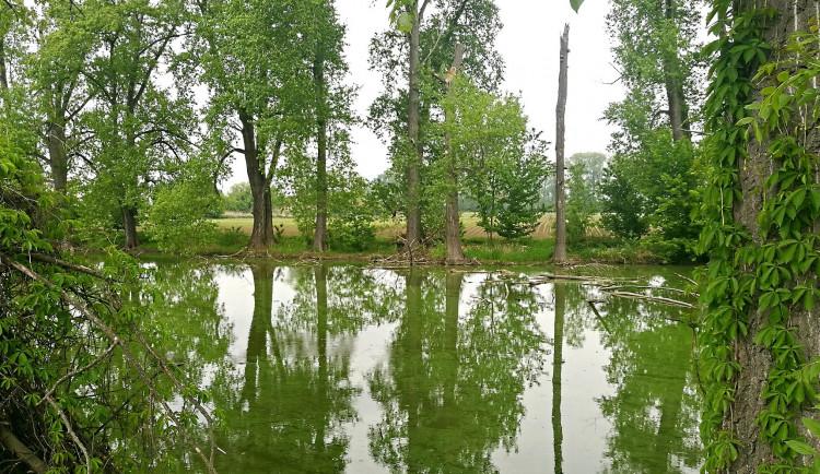 Plánovaná čtvrtá protipovodňová etapa přinese rekreační místa na jihu Olomouce