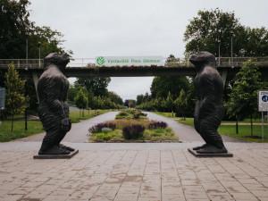FOTO: Velké bronzové sochy lidoopů už stojí na svém místě u Rudolfovy aleje. Jedna váží tři čtvrtě tuny
