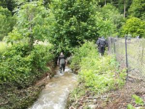 Policie našla tělo doposud nezvěstné seniorky. Pohřešovala se přes dva týdny