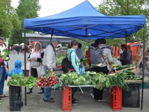 Selské trhy ve Smetanových sadech sklidily úspěch. Uskuteční se také o prázdninách