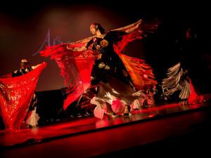 Na konci července roztančí město už dvanáctý ročník mezinárodního festivalu Colores Olomouc