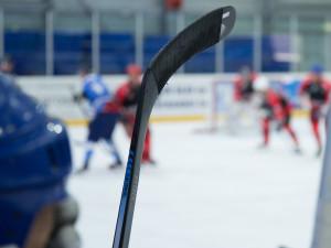 Soud zmírnil trest bývalému šéfovi mladých hokejistů Prostějova za pokus o dotační podvod
