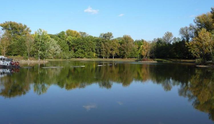 Sezóna koupání může začít, voda ve sledovaných koupalištích je čistá