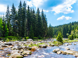 Plánujete letošní dovolenou v Česku? Přinášíme rady a tipy, na co si při výběru dát pozor