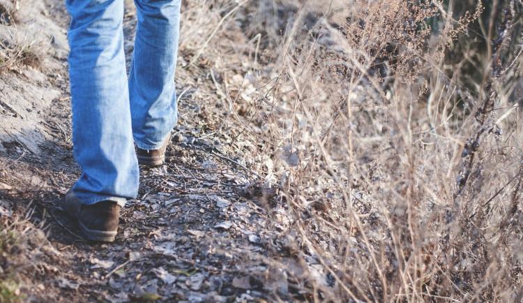 Nová publikace psychologů z UP se zabývá výzkumem chůze. Olomouc považují za walkable město