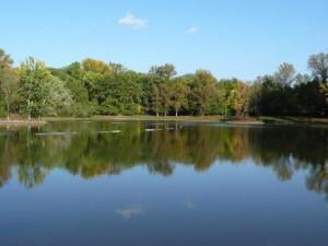 Sezóna koupání je v plném proudu, voda v Plumlově i na Poděbradech je nezávadná