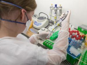 Jedna z úřednic na prostějovském magistrátu měla pozitivní test na koronavirus