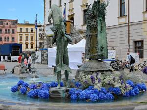 FOTO: Po Sloupu Nejsvětější Trojice vykvetla i vedlejší Arionova kašna. Tentokrát bílými a modrými květy