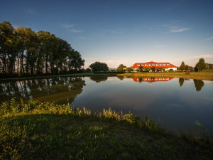 Romantický rybník a výhled na pasoucí se koně. Takový je olomoucký Park Hotel Prachárna