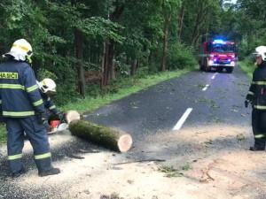 Hasiči Olomouckého kraje odstraňovali popadané stromy