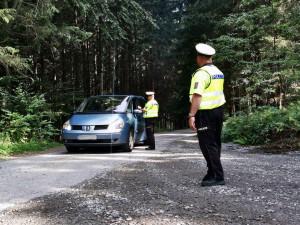 Policisté pokutovali neukázněné řidiče. Společně s lesníky odhalili třináct přestupků