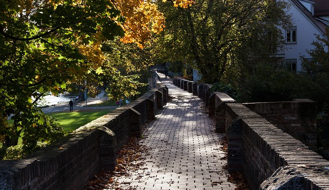Město Prostějov díky dotaci rozšířilo plochy krajinné zeleně. Vysázelo se 31 listnatých stromů a 1 200 keřů