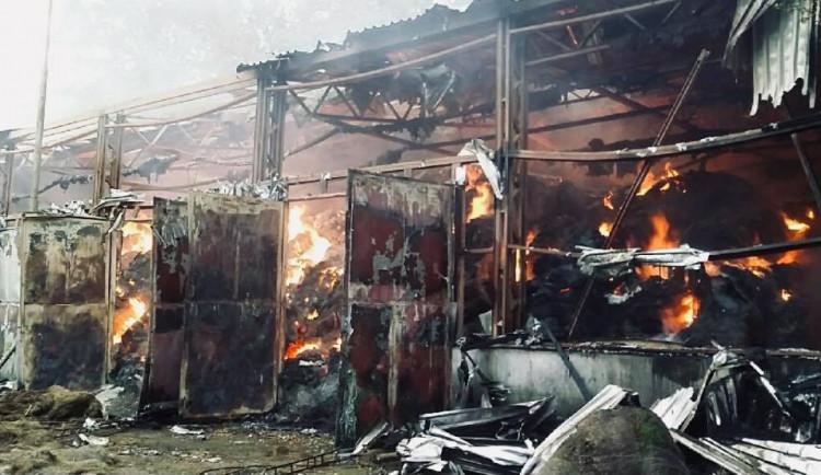 FOTO: V Mikulovicích hoří hala s uskladněným senem. Škoda jde do milionů