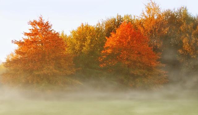 Letošní listopad bude spíše teplejší, ke konci měsíce bude padat sníh na horách i v nížinách
