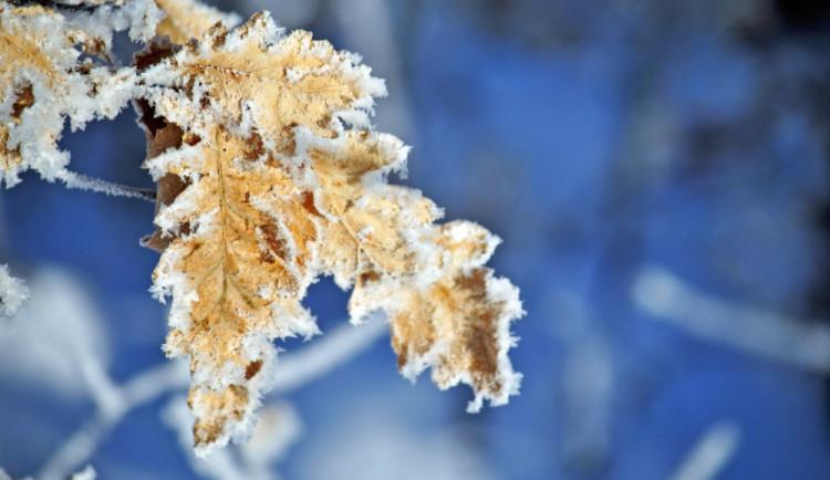 Až do poloviny prosince bude mrznout jen v noci