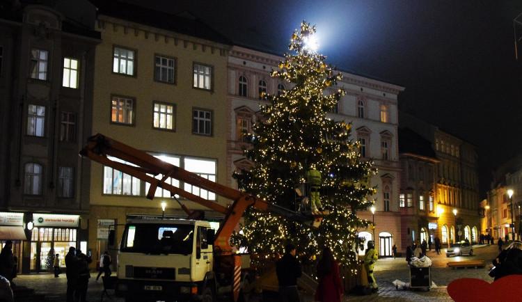 FOTO: Olomoucký vánoční stromeček se na zkoušku rozsvítil. Podívejte se, jak letos vypadá