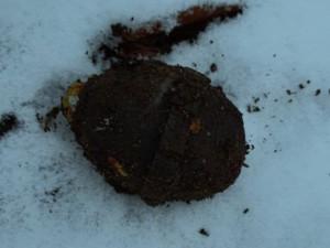 Místo cenností nalezl hledač pokladů granát
