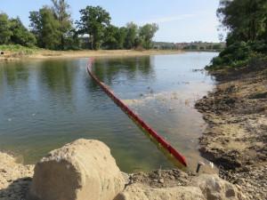 Na zarybnění řeky Bečvy už padlo půl milionu korun. Bude pokračovat i letos, snahou je nahradit všechny ročníky