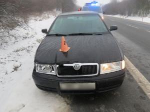 Střet s autem srna nepřežila. Škoda činí přes 20 tisíc korun