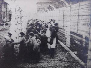 Na osvobození Osvětimi nikdy nezapomenu, vzpomíná poslední žijící dvojče, na kterém Josef Mengele prováděl pokusy