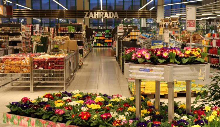 Přivítejte ve vaší zahrádce jaro shypermarketem Globus