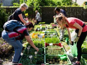 Olomoucké Výstaviště Flora začne pořádat selské a zahradnické trhy