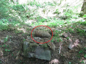 Muž s detektorem kovů objevil v lese u Hanušovic dělostřelecký granát