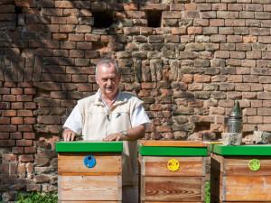 Fakultní nemocnice Olomouc má vlastní med, včelí úly stojí přímo v jejím areálu
