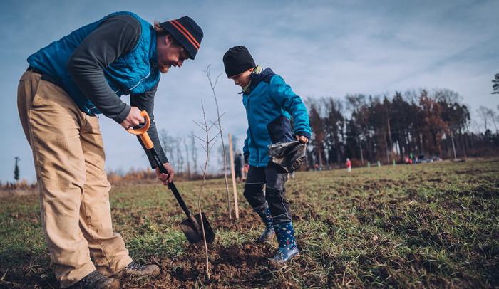 V prostějovských Čechůvkách si lidé budou moci zasadit svůj strom