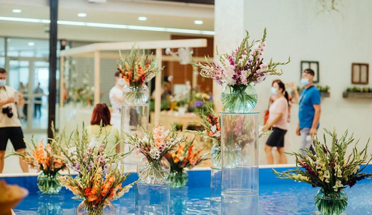 Visuté zahrady i léčivé rostliny. Letní Flora Olomouc chystá nabitý program