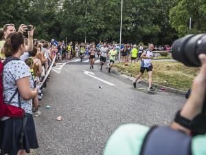 Půlmaraton v Olomouci pojedenácté. Město se chystá na davy běžců i dopravní omezení