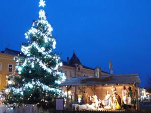 Až se zima zeptá... Město Prostějov již začalo hledat letošní vánoční strom