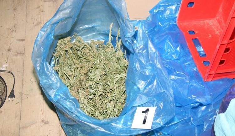 Přerovští kriminalisté zatkli dealera drog. Našli u něj pět kilo marihuany