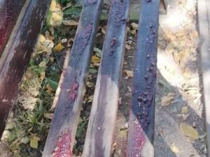 V Litovli někdo pomazal lavičky marmeládou. Zřejmě tak bojuje proti bezdomovcům