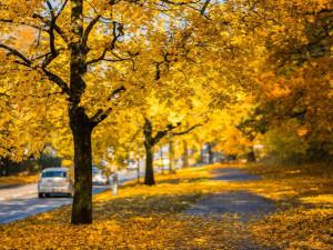 Podzim může na silnicích překvapit. Teploty rychle spadnou, tvrdí odborníci